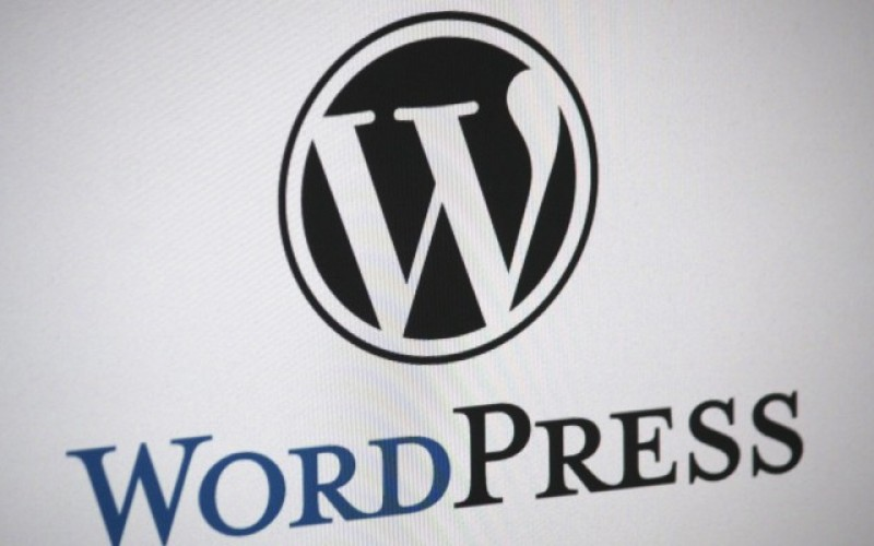 Top 25 Reasons To Start your Business With WordPress Website